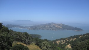 The view from Mt. Livermore