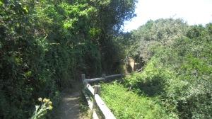 Angel Island hiking trails