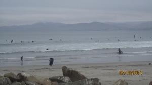 Surfer delight